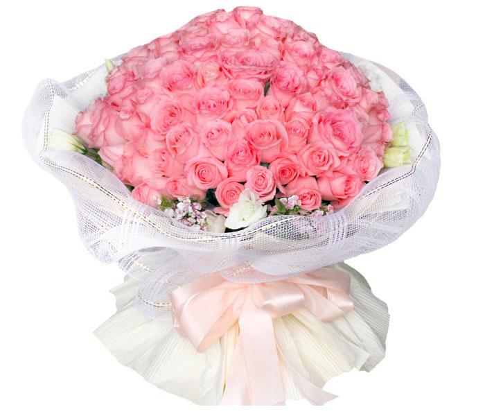 99朵粉玫瑰/远方的祝福